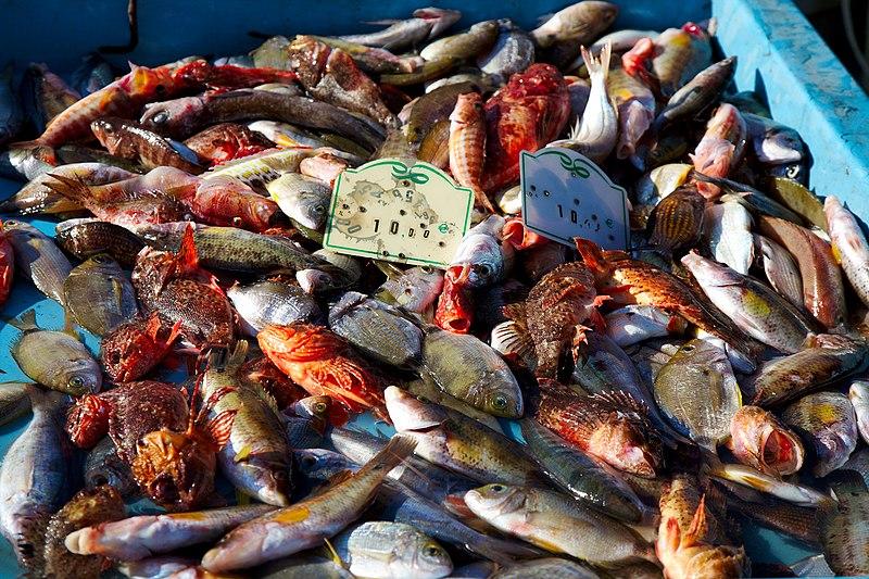 File:Poissons pour la bouillabaisse sur le Vieux-Port de Marseille.jpg