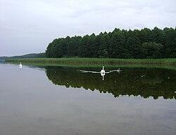 Poland. Gmina Jedwabno. Brajnickie Lake 003.JPG