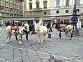 Ponies Piazza.jpg