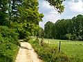 Pontarmé (60), chemin rural n° 28 dit des Loges (chemin de Montgrésin).jpg