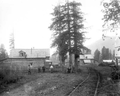 PorcupineCamp1910.png