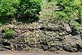Port Clinton, PA - bedrock outcrop.jpg