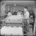 Poston, Arizona. Tamio Yamada, former student in press work at the Frank Wiggins Trade School in Lo . . . - NARA - 537114.tif