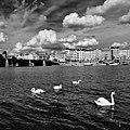 Praha, Tančící dům a Vltava, foto Jiří Tondl.jpg