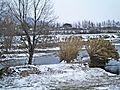 Prato-02,02,2012-Bisenzio con neve 23.jpg