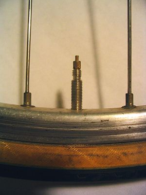 Presta valve - A Presta valve shown in context of the rim, spokes, and tire of a bicycle wheel