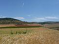 Province de Soria 2.jpg