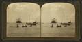 Pulling the nets, fishing in the Bay of Honolulu, Hawaiian Islands, by H.C. White Co..png