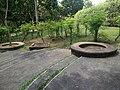 Putrajaya's Botanical Garden 06.jpg