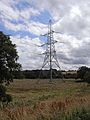 Pylon in hayfield - geograph.org.uk - 1431316.jpg