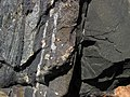 Pyrite crystals in magnetite-quartz banded iron formation (Temagami Iron-Formation, Neoarchean, ~2.736 Ga; Temagami North roadcut, Temagami, Ontario, Canada) 18 (33931265468).jpg
