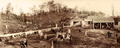 Queensland State Archives 5161 Crohamhurst Milking Yards and Sheds c 1899.png
