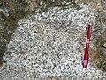 REE-enriched granite.jpg