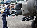 RSAF Open House 2008 MG 7541 (2811061458).jpg