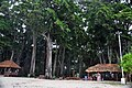 Radha nagar beach,Havlock island,Andaman - panoramio.jpg
