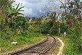 Railway between Badulla and NanuOya - panoramio.jpg