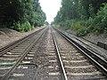 Railway to Pluckley - geograph.org.uk - 1420778.jpg
