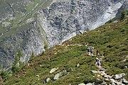 Randonneurs Glacier Tour.jpg