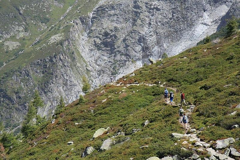 Fichier:Randonneurs Glacier Tour.jpg