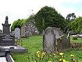 Rasharkin Old Church and Graveyard - geograph.org.uk - 858020.jpg