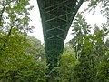 Ravenna Park Bridge 04 - colormapped.jpg