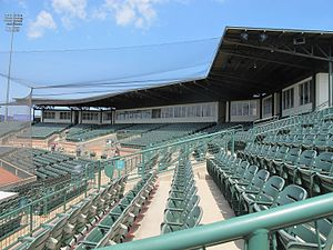 Reckling Park - Rice's Reckling Ballpark Stands, 2016
