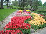 Reinisch Rose Garden, Gage Park, Topeka, Kansas01.jpg