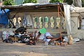 Resting Cobbler In Summer - Salt Lake City - Kolkata 2017-05-02 7067.JPG