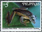 Rhacophorus pardalis 1999 stamp of the Philippines.jpg