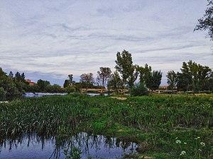 Rio Tormes en Salamanca con pesquera y puente de hierro.jpg