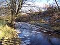 River Cover - geograph.org.uk - 115611.jpg