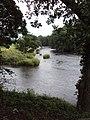 River Hodder meets River Ribble - geograph.org.uk - 1421579.jpg