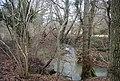River Line in Horeman's Wood - geograph.org.uk - 1724163.jpg