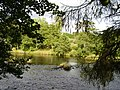 River North Tyne standing on the bank at Haughton - geograph.org.uk - 255526.jpg