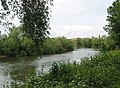 River Wye at Ross - geograph.org.uk - 450270.jpg