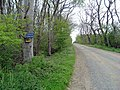 Road to Upper Crichie - geograph.org.uk - 433032.jpg