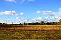 Robenhauser Riet 2012-10-13 17-06-22.JPG