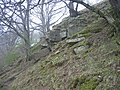 Rock outcrop, Embley Bank - geograph.org.uk - 1264567.jpg