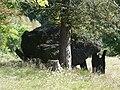 Rouffignac-Saint-Cernin dolmen Cayre (2).JPG