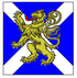 Royal Regiment of Scotland TRF