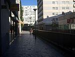 Rue du Colonel-Rozanoff (Paris).JPG