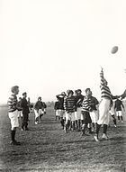 Rugby-union-lineout-r.jpg