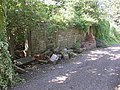Ruined cottages at Moorside Farm, Bullace Trees Lane, Roberttown, Liversedge - geograph.org.uk - 542582.jpg