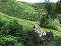 Ruins and Hillside at Dinas, Cwm Doethie, Ceredigion - geograph.org.uk - 512090.jpg