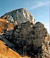 Säugling - Gipfel (7567556732).jpg