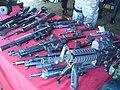 SAJ weapons.JPG