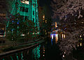 San Antonio Riverwalk at Night with Christmas Lights (2014-12-12 23.25.35 by Nan Palmero).jpg