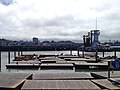 San Francisco Seehunde Pier 39 (22235424521).jpg