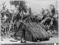 "San Juan, Puerto Rico, and vicinity, 1901-1903- ""Typical Puerto Rican (grass) hut"" LCCN2006675633.jpg"