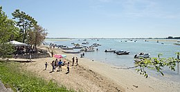 Sant'Erasmo (island) South end of the island.jpg